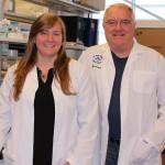 Immunothérapies combinées : la voie vers un remède
