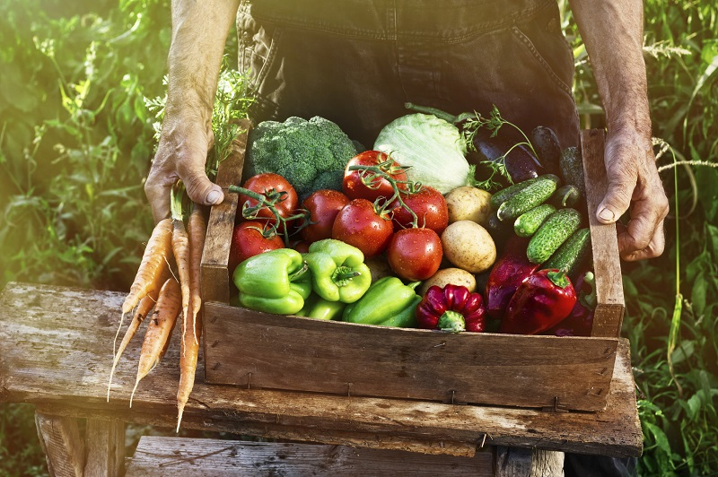 eat-fruits-and-veggies-learn-why