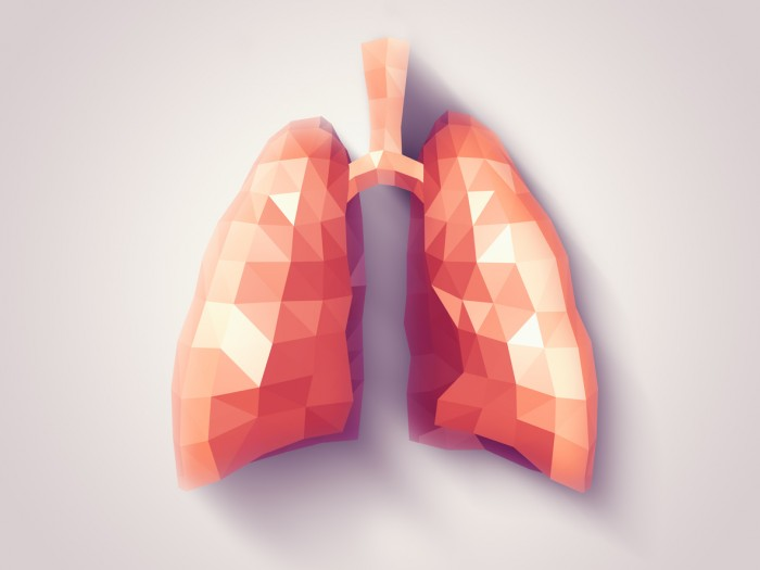 Illustration of human lungs with faceted low-poly geometry effect